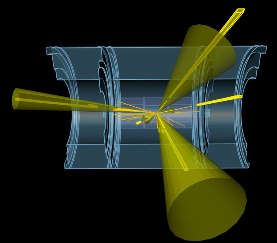 Simulation of a vector boson plus jet event