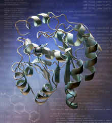 A metal-binding protein designed by the Baker laboratory.