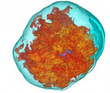 Magnetohydrodynamic turbulence powered by neutrino driven convection