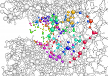 SiO2 Fracture: Chemomechanics with a Machine Learning Hybrid QM/MM Scheme