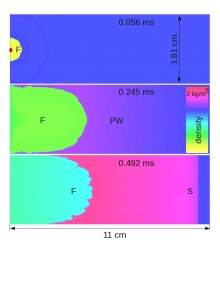 Three-dimensional reactive Navier-Stokes direct numerical simulation of a flame acceleration