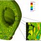 Plasma density fluctuation from large amplitude nonlinear turbulence in the tokamak edge region